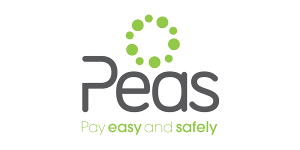 Pay Easily and Safely Logo